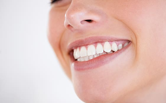 Dental Fillings in Northwest (NW) Calgary